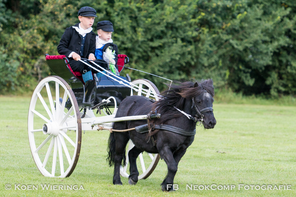 25e Septemberconcours in Norg weer daverend succes.