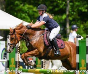 2019-06-01 Roden, CH pony's M+Z en paarden B+BB