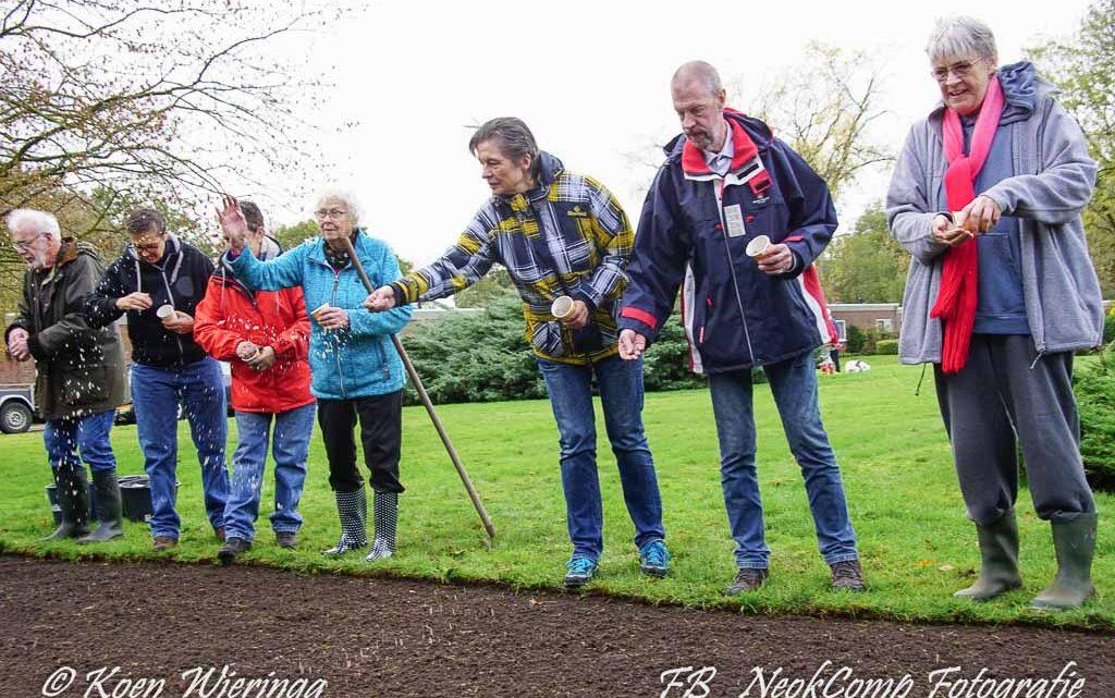 2019-11-02 Start aanleg bloemenlint bij de Vijversburg in Norg