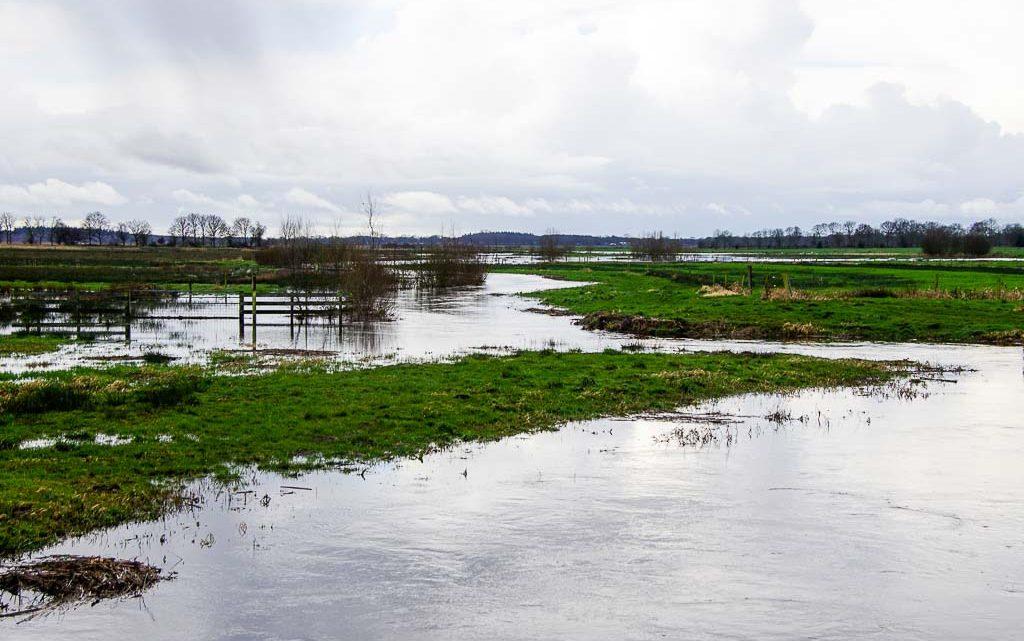 2020-02-26 Water…heel veel water. Ook in Noordenveld.