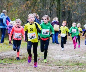 23e Herfstcross in de bossen van Norg weer groot succes.