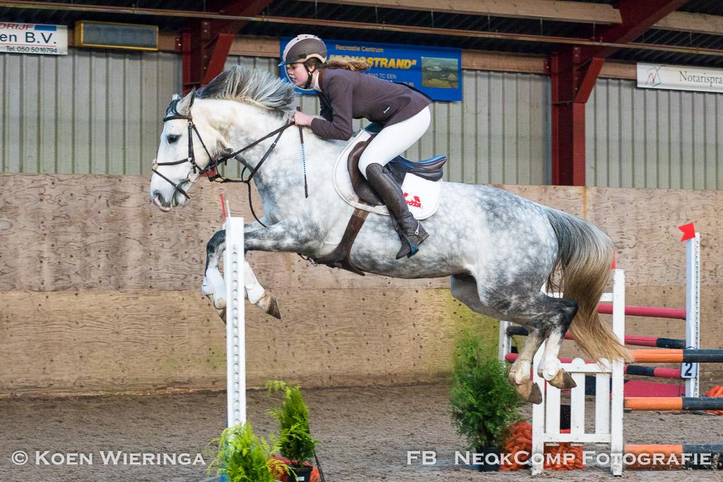 Indoor springwedstrijden pony's, diverse rubrieken. Manege De Hulhorst in Roden.